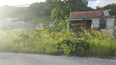 Real Estate -  06 Pollard, Saint Philip, Barbados -